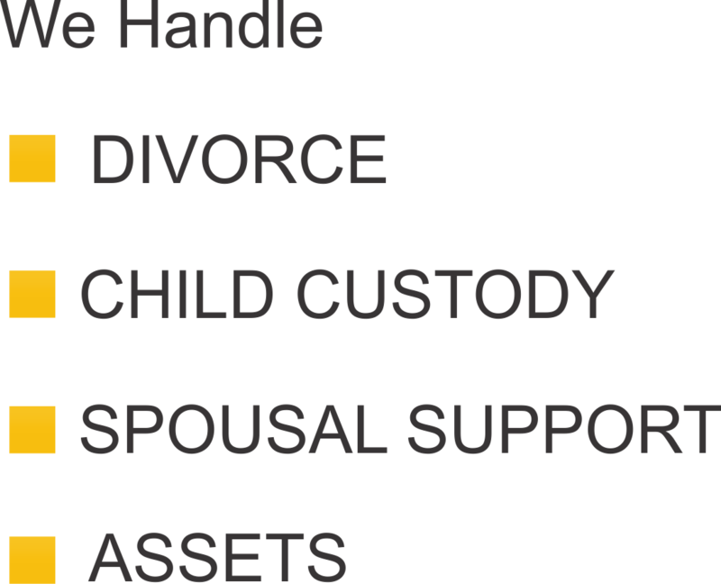 Detroit cheap child support lawyer in michigan 1313 982 0010 attorney lisa short solutioingenieria Gallery